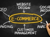 Websites, ecommerce and mcommerce Consulting